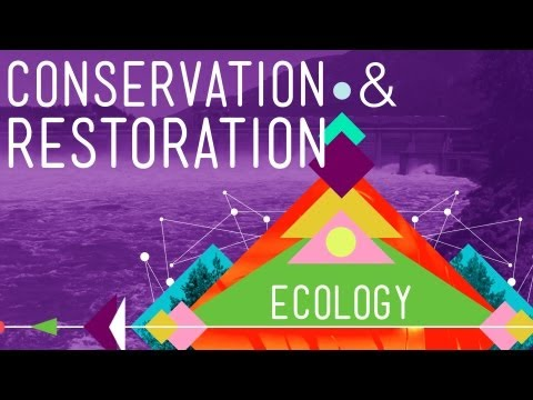 Conservation and Restoration Ecology: Crash Course Ecology #