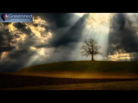 Super Intelligence, Binaural Beats Focus Music, Productivity Music for Concentration