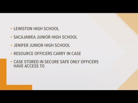 Three Lewiston schools to have rifles stored in safes on school property