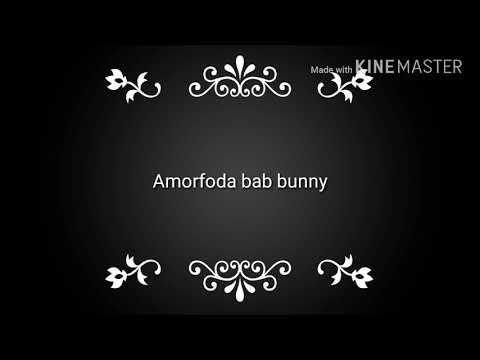 Bad bunny amorfoda (audio)