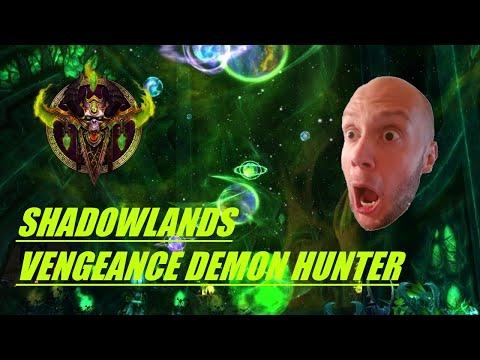 Shadowlands Vengeance Demon Hunter Review
