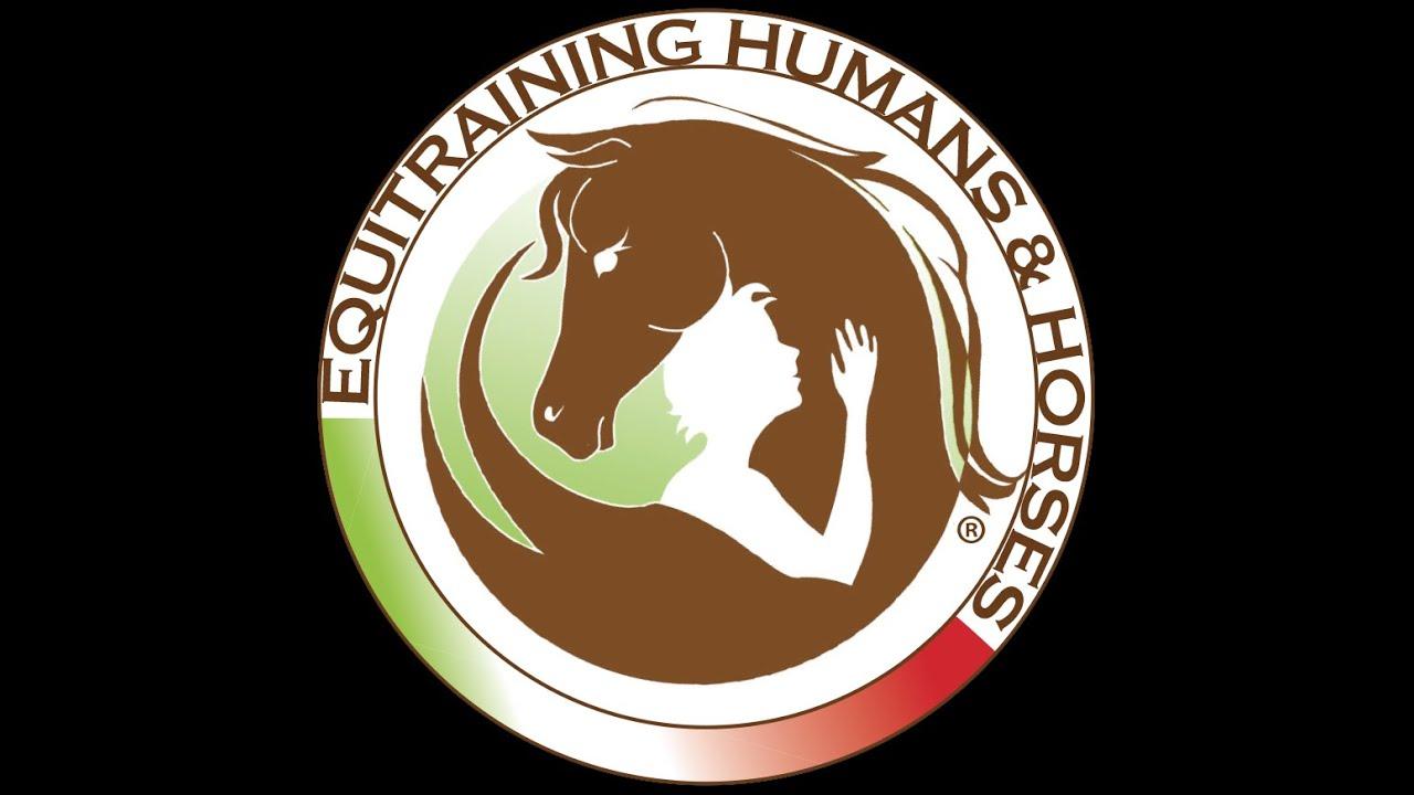 disagio del cavallo logo image