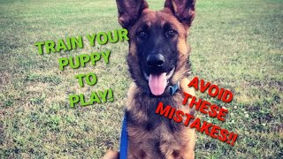 How to PLAY with your Puppy  Shield K9