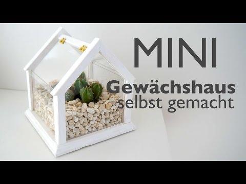 Mini Gewächshaus - Schritt für Schritt - Anleitung in deutsch