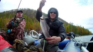 Рыбалка на Байкале с лодки ВИРТА 420 + Tohatsu 40 и Тент Комби