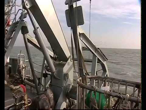 Televox Spécial Composante Marine