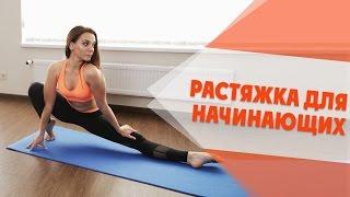 Растяжка Для Начинающих | Stretching For Beginners [90-60-90]