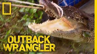 Giant Croc Catch | Outback Wrangler