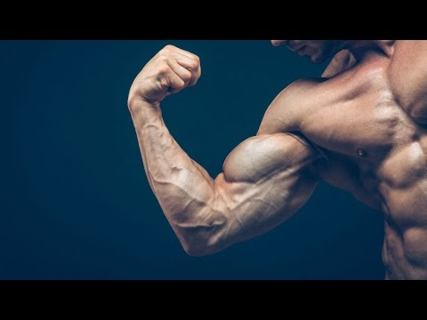 How to know if you're losing muscle when cutting