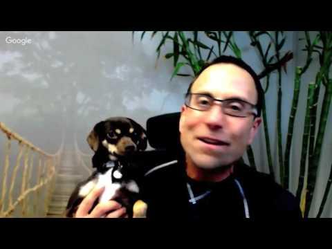 Psychology of Web Traffic & Conversion with Alex Mandossian