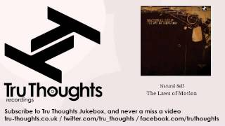 Natural Self - The Laws of Motion
