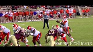Eddie Goldman || Florida State Highlights ᴴᴰ