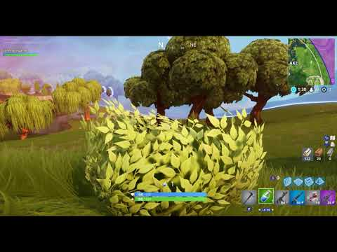 John Green is a Fortnite Pacifist #14