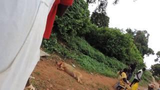 Sacrifício de feiticeiros em Bissau em plena luz do dia. Isso…