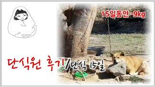 단식원후기/양평단식원/단식원일상/단식원/15일버티기