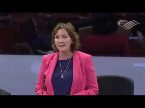 04-10-2017 Ombudsman Bill Statement - Janet Finch Saunders AM