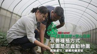 愛買-友善地球安心生鮮:【桃園蘆竹】御圃有機葉菜