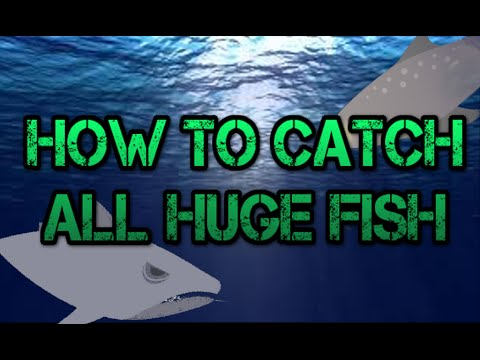 Cat Goes Fishing: How To Catch ALL Huge Fish
