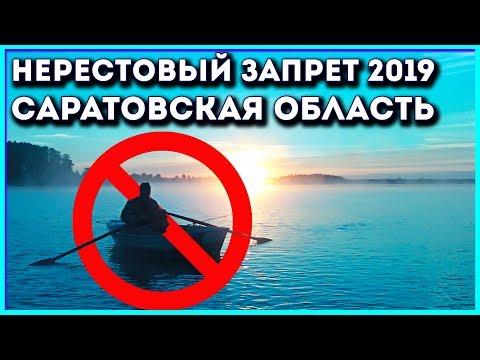 Нерестовый запрет 2019 в Саратовской области.