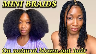 Mini Braids   Simple Protective Style on Natural hair