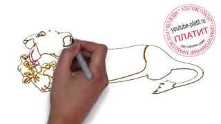 Король лев онлайн  Как правильно карандашом рисовать король лев поэтапно(Король лев мультфильм. Как правильно нарисовать короля льва онлайн поэтапно. На самом деле легко и просто..., 2014-09-18T15:04:54.000Z)