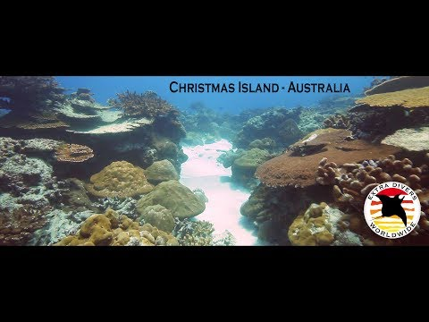 Extra Divers: Christmas Island - A hidden world
