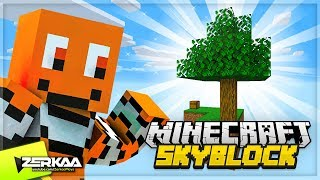 A New MINECRAFT Series! (Minecraft Skyblock #1)