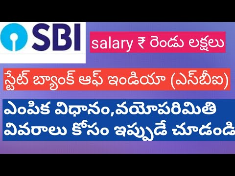 State bank of India State bank of india recruitment SBI jobs HR specialist jobs SBI specialist cadre