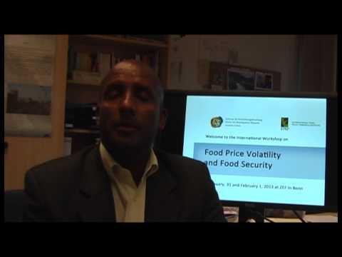 Food Price Volatility Workshop 2013: Seid Nuru Ali
