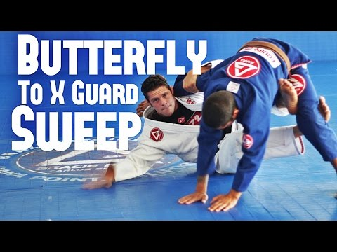 Basic Butterfly to X Guard Sweep - BJJ With Flavio Almeida