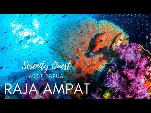 RAJA AMPAT ULTIMATE  DIVING   - West Papua -  4K Video