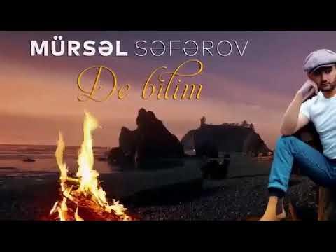 Mursel Seferov-De bilim