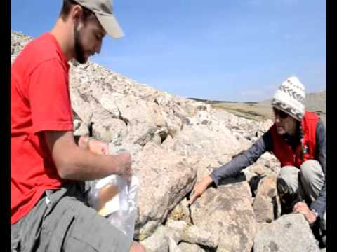 Front Range Pika Protocols-Scat Collection