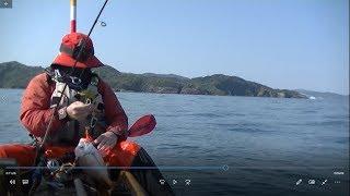 カヤックフィッシングの旅2018春の陣その3島根県松江沖