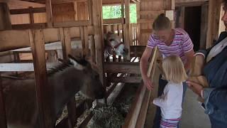 The Farm in Door County, Wisconsin