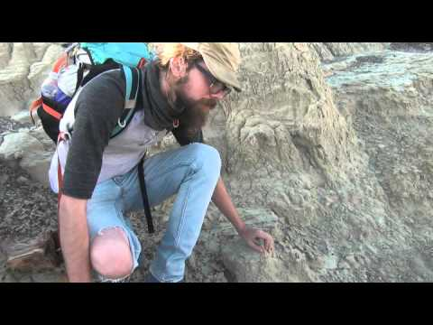 Southwest Paleo Society - Chris Wolfe