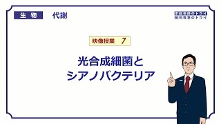 【高校生物】 代謝7 光合成細菌とシアノバクテリア(16分)