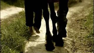 """Three legged horse"" trailer (2008)"