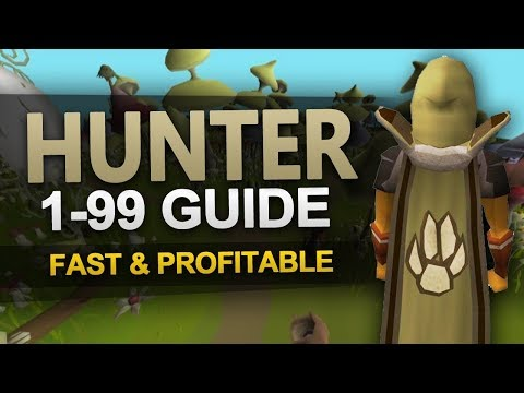 Theoatrix's 1-99 Hunter Guide (OSRS)
