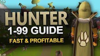 Theoatrix's 199 Hunter Guide (OSRS)