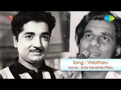 Ente Nandinikuttikku   Vidatharu song