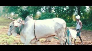Annadata sukhibhava Video Song