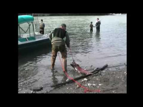 Fishing King Salmon Talkeetna River, Alaska 2003