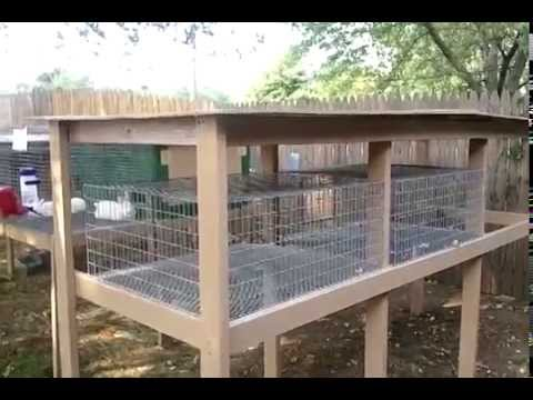 Build A Rabbit Hutch The Roof Youtube