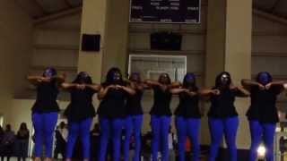 Wiley College Sigma Gamma Rho Spr 2k14