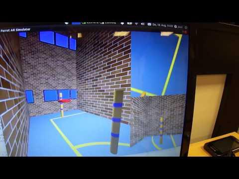 BioMAV: VR-Lab Testing