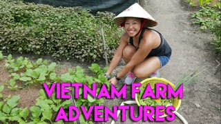 Vietnam Adventures: Ho Chi Minh Farm Tour