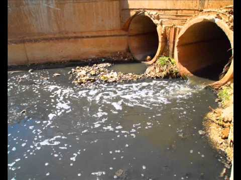 Salfit continues to suffer from illegal settlement sewage