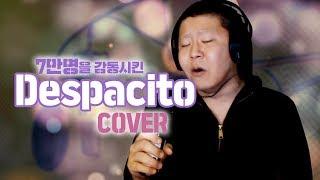 Luis Fonsi - Despacito(cover by 삐약) 원곡보다 더 잘부르는 40대 아재 등장!!!