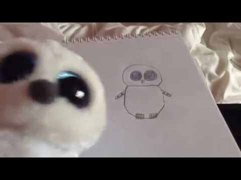 e43b1bb976d How to Draw a TY Beanie Boo - Drawing Tutorial by Poppy - YouTube